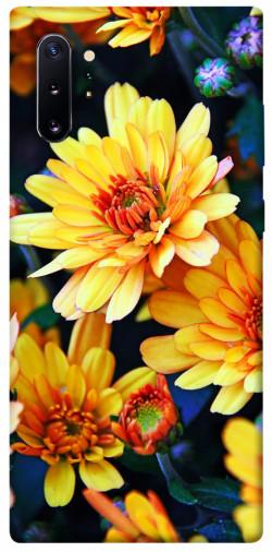 Чехол itsPrint Yellow petals для Samsung Galaxy Note 10 Plus