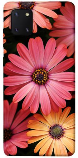 Чехол itsPrint Осенние цветы для Samsung Galaxy Note 10 Lite (A81)