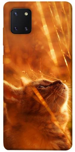 Чехол itsPrint Magic cat для Samsung Galaxy Note 10 Lite (A81)