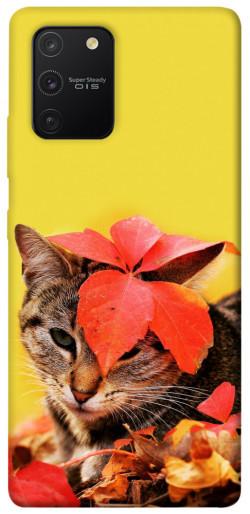 Чехол itsPrint Осенний котик для Samsung Galaxy S10 Lite