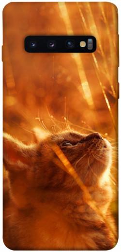 Чехол itsPrint Magic cat для Samsung Galaxy S10