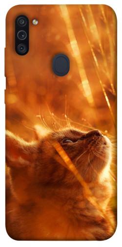 Чехол itsPrint Magic cat для Samsung Galaxy M11