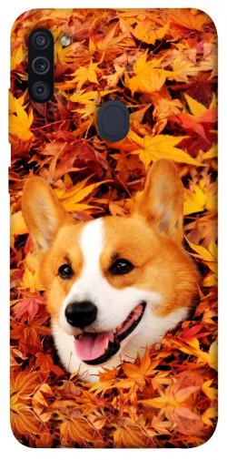 Чехол itsPrint Корги в листьях для Samsung Galaxy M11