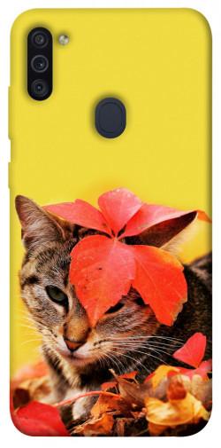 Чехол itsPrint Осенний котик для Samsung Galaxy M11