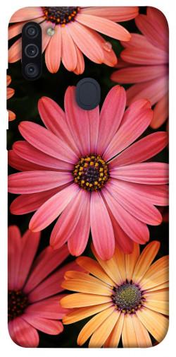 Чехол itsPrint Осенние цветы для Samsung Galaxy M11