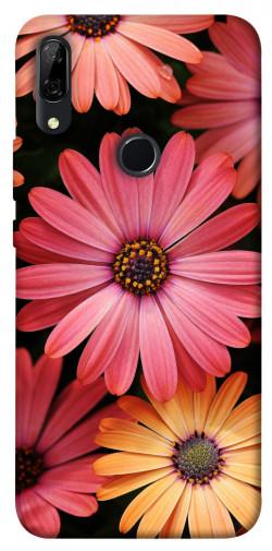 Чехол itsPrint Осенние цветы для Huawei P Smart Z