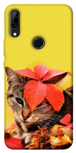 Чехол itsPrint Осенний котик для Huawei P Smart Z