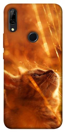 Чехол itsPrint Magic cat для Huawei P Smart Z