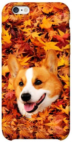 """Чехол itsPrint Корги в листьях для Apple iPhone 6/6s (4.7"""")"""