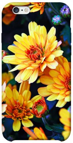 "Чехол itsPrint Yellow petals для Apple iPhone 6/6s (4.7"")"