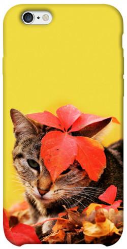 """Чехол itsPrint Осенний котик для Apple iPhone 6/6s (4.7"""")"""