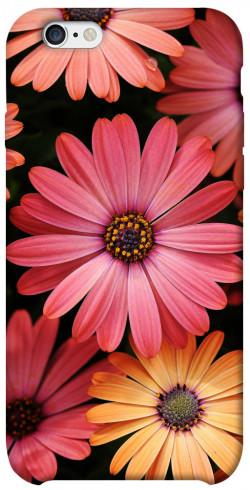 "Чехол itsPrint Осенние цветы для Apple iPhone 6/6s (4.7"")"