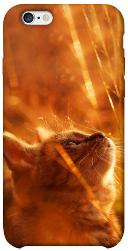 "Чехол itsPrint Magic cat для Apple iPhone 6/6s (4.7"")"
