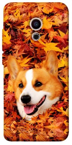 Чехол itsPrint Корги в листьях для Meizu Pro 6