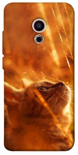 Чехол itsPrint Magic cat для Meizu Pro 6