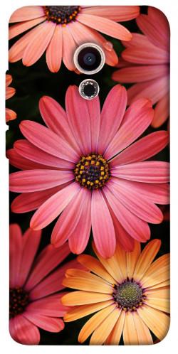 Чехол itsPrint Осенние цветы для Meizu Pro 6